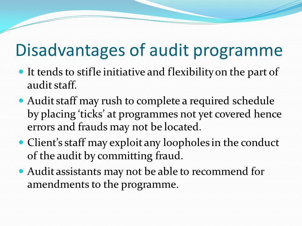 advantages and disadvantages of audit programme
