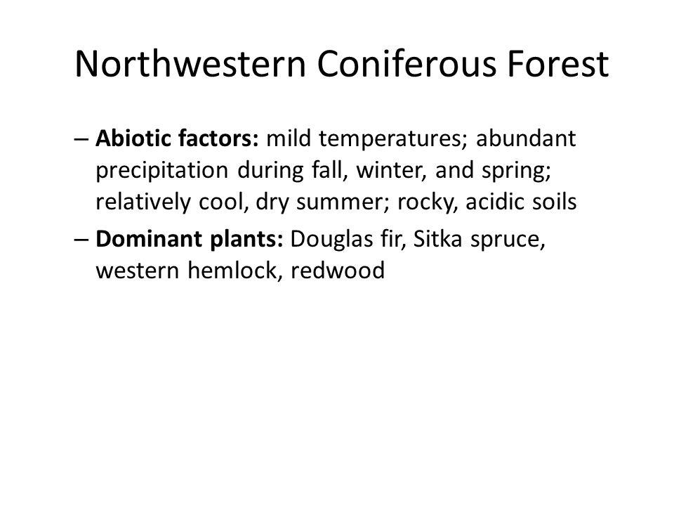 Northwestern Coniferous Forest Redwood
