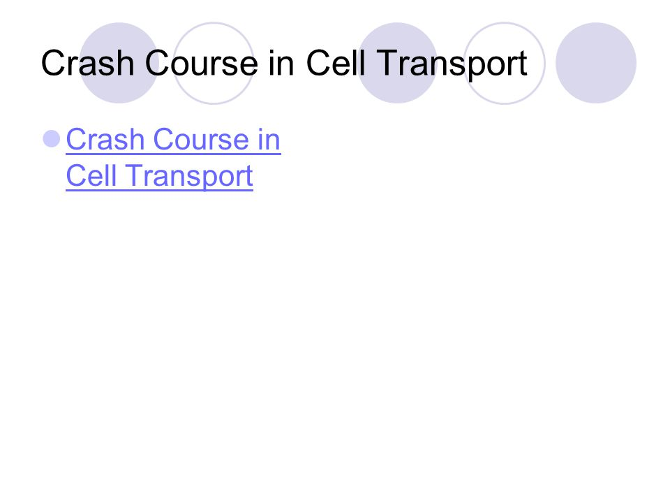 Crash Course in Cell Transport