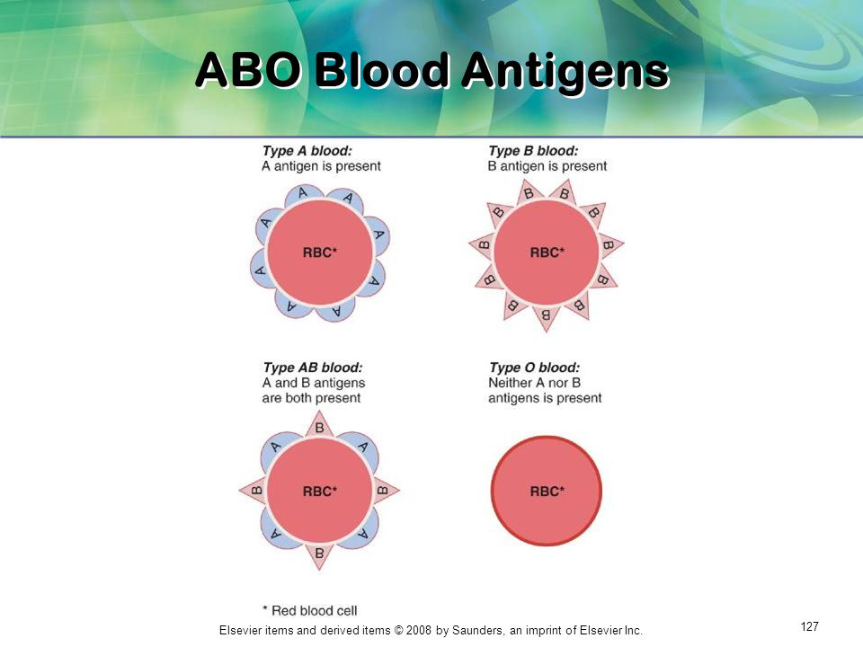 ABO Blood Antigens