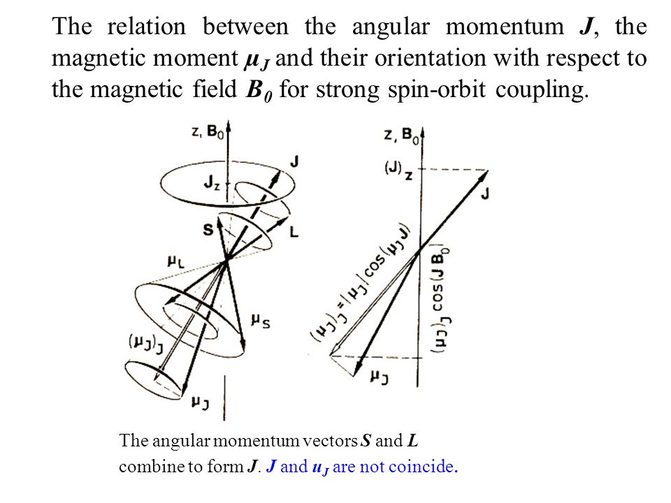 Chapter 7 atoms in a magnetic field ppt download the relation between the angular momentum j the magnetic moment j and their orientation with ccuart Images