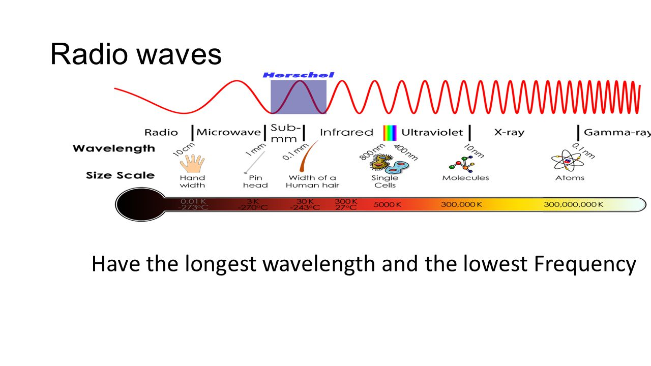 Radio waves Have the longest wavelength and the lowest Frequency