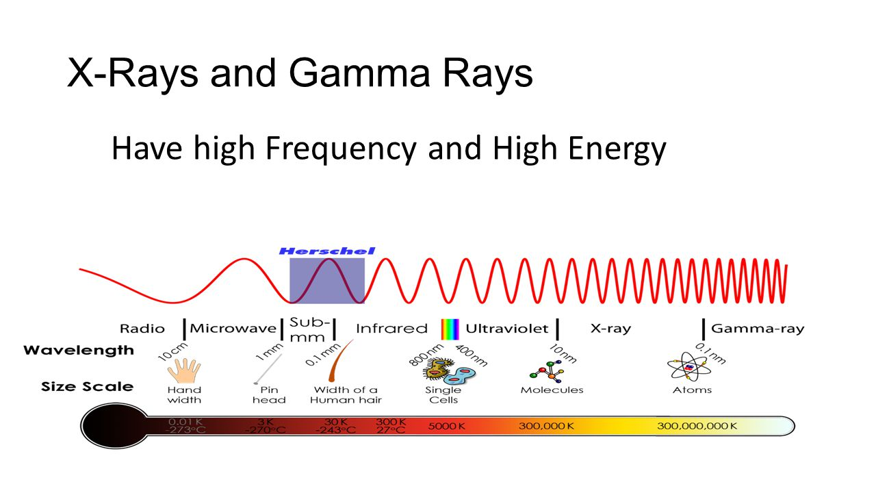 X-Rays and Gamma Rays Have high Frequency and High Energy