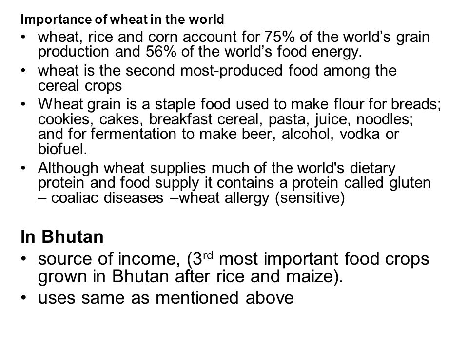 Wheat  - ppt video online download