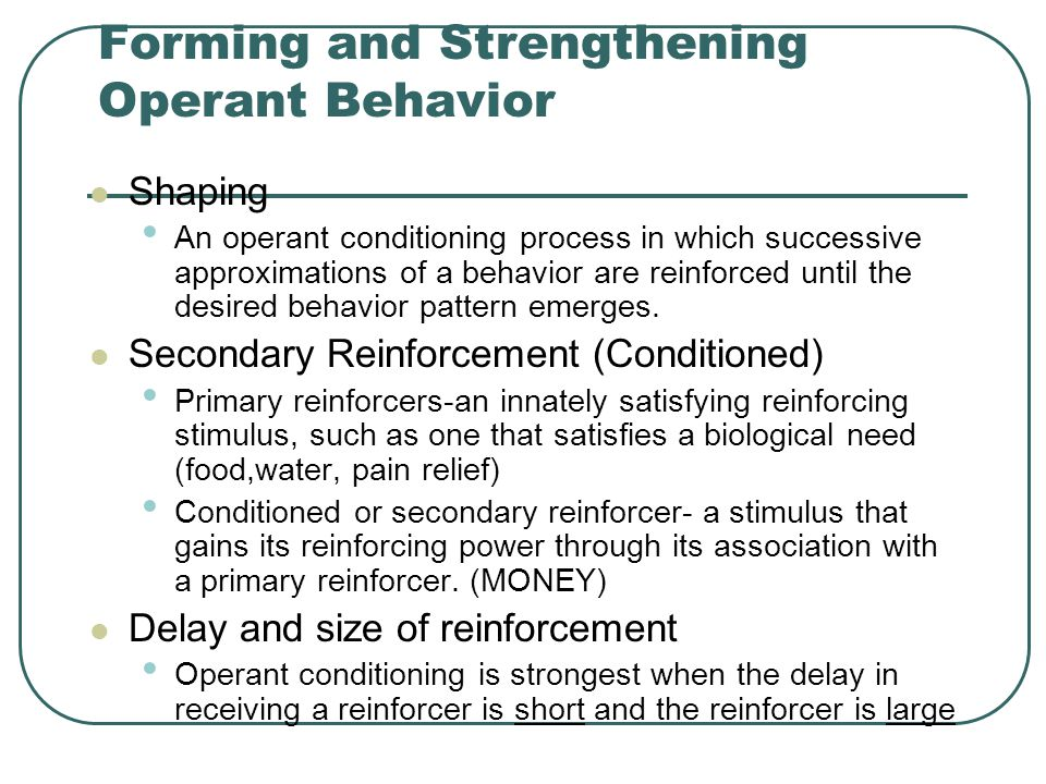 Forming and Strengthening Operant Behavior