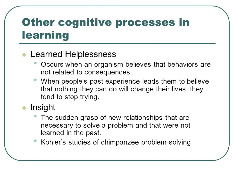Other cognitive processes in learning