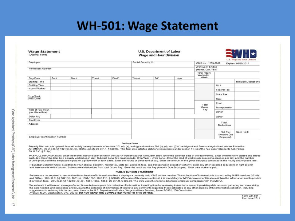WH-501: Wage Statement