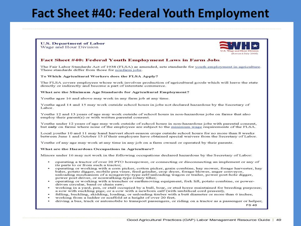 Fact Sheet #40: Federal Youth Employment Laws in Farm Jobs