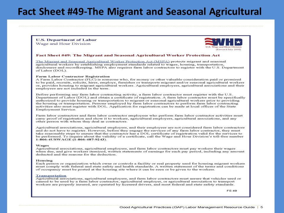Fact Sheet #49-The Migrant and Seasonal Agricultural Worker Protection Act (MSPA)