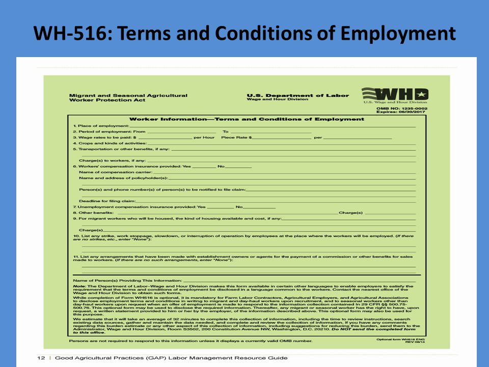 WH-516: Terms and Conditions of Employment