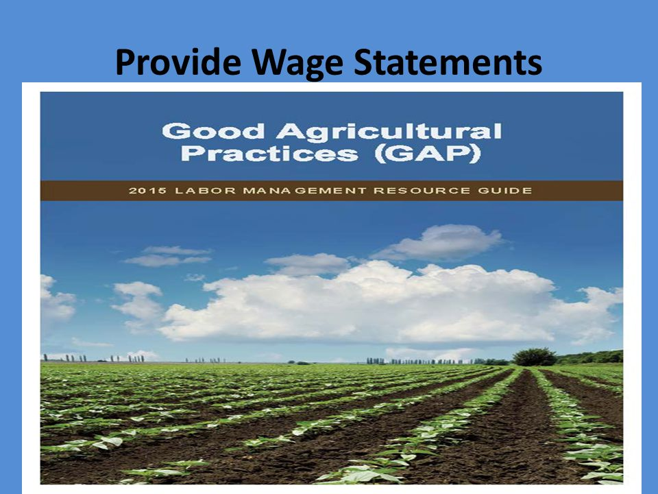 Provide Wage Statements