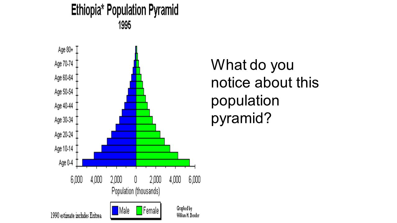 What do you notice about this population pyramid