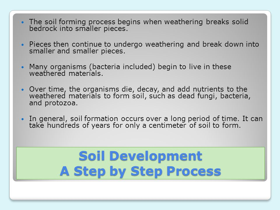 Soil Development A Step by Step Process
