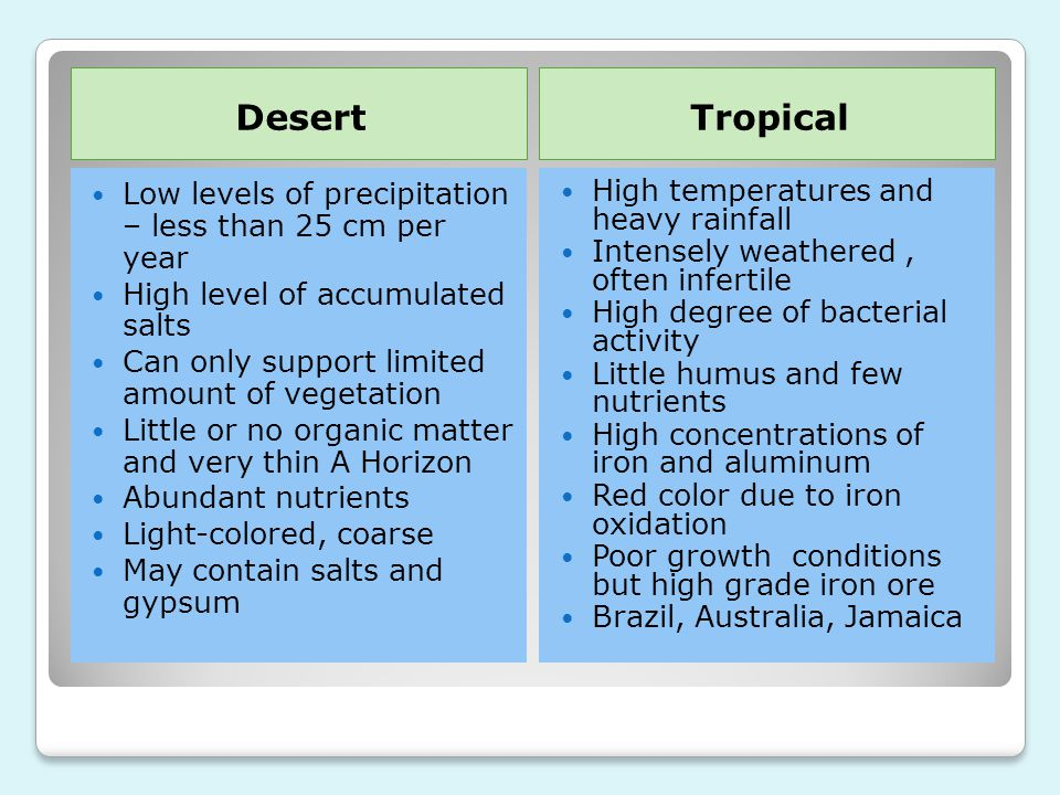 Desert Tropical Low levels of precipitation – less than 25 cm per year
