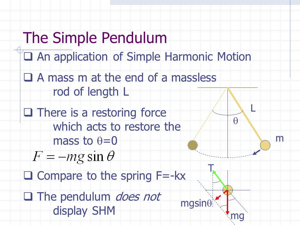 The Simple Pendulum An application of Simple Harmonic Motion