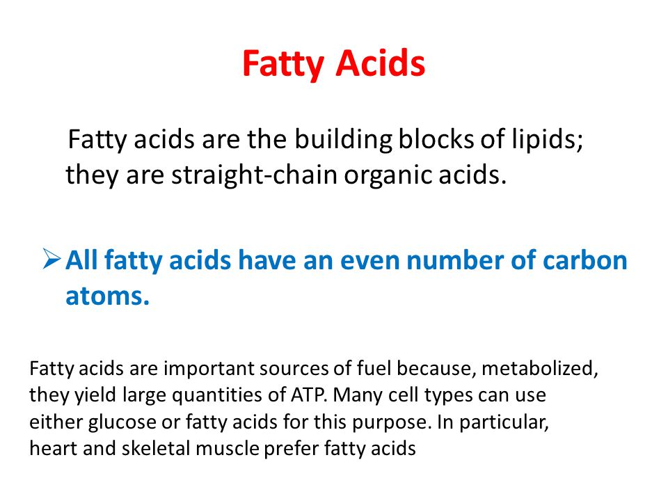Fatty Acids Fatty acids are the building blocks of lipids; they are straight-chain organic acids.