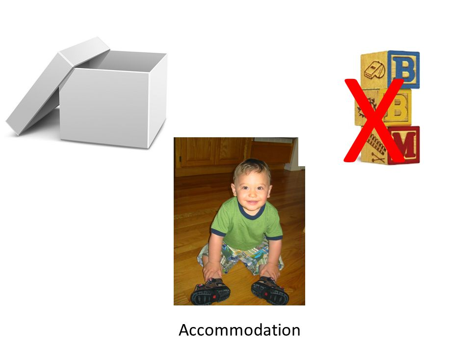 X Accommodation