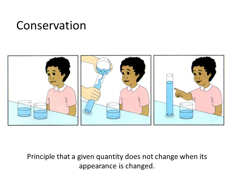 Conservation Principle that a given quantity does not change when its appearance is changed.
