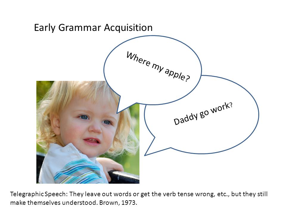 Early Grammar Acquisition