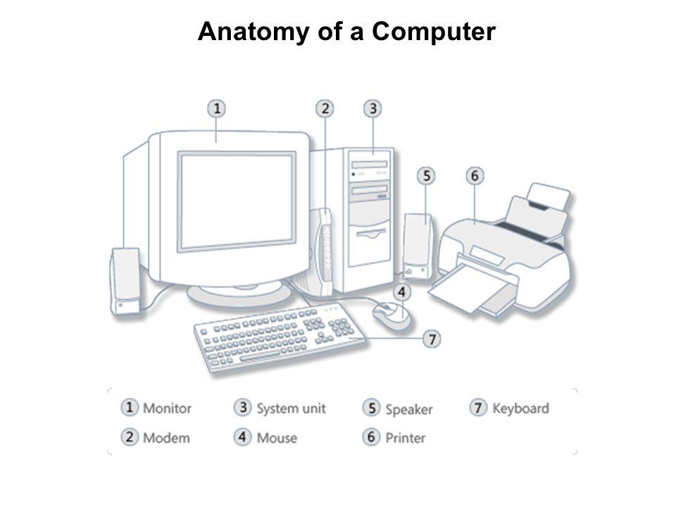 computer organization and assembly language