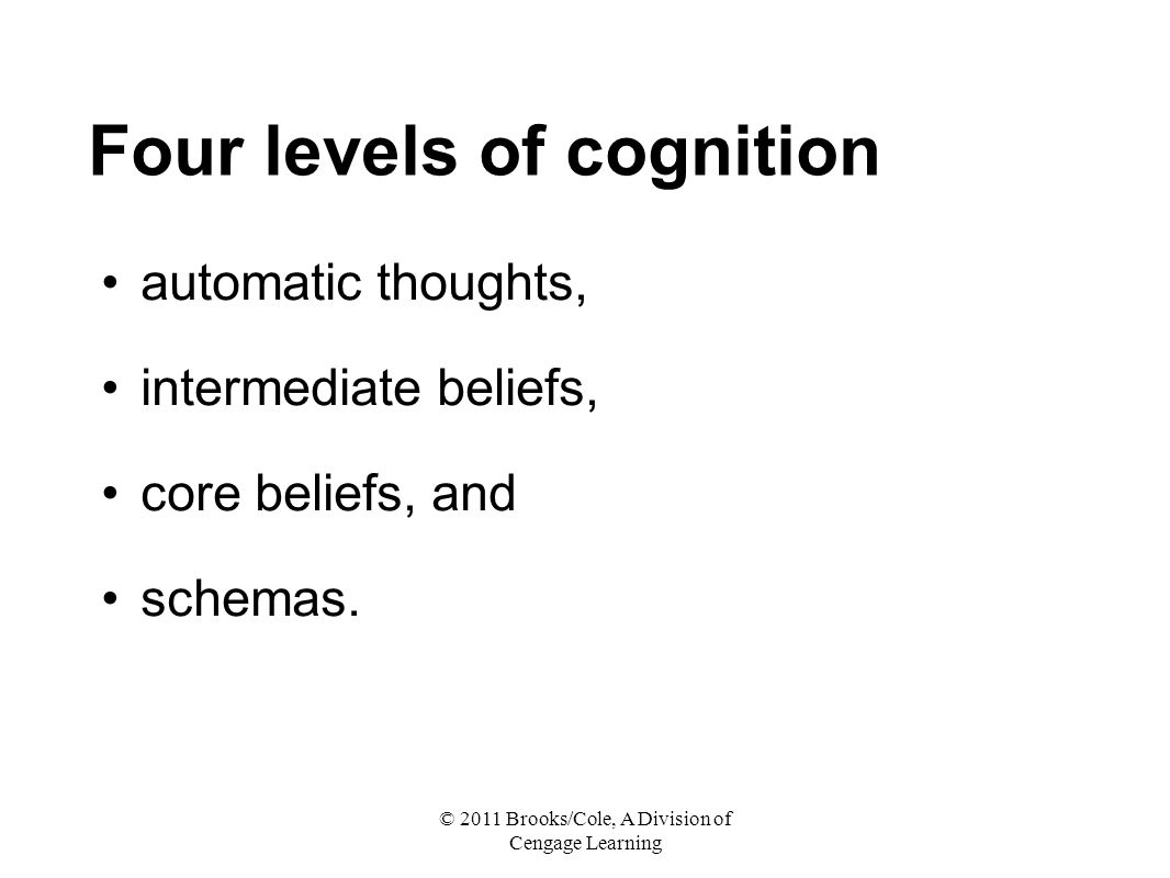 Four levels of cognition