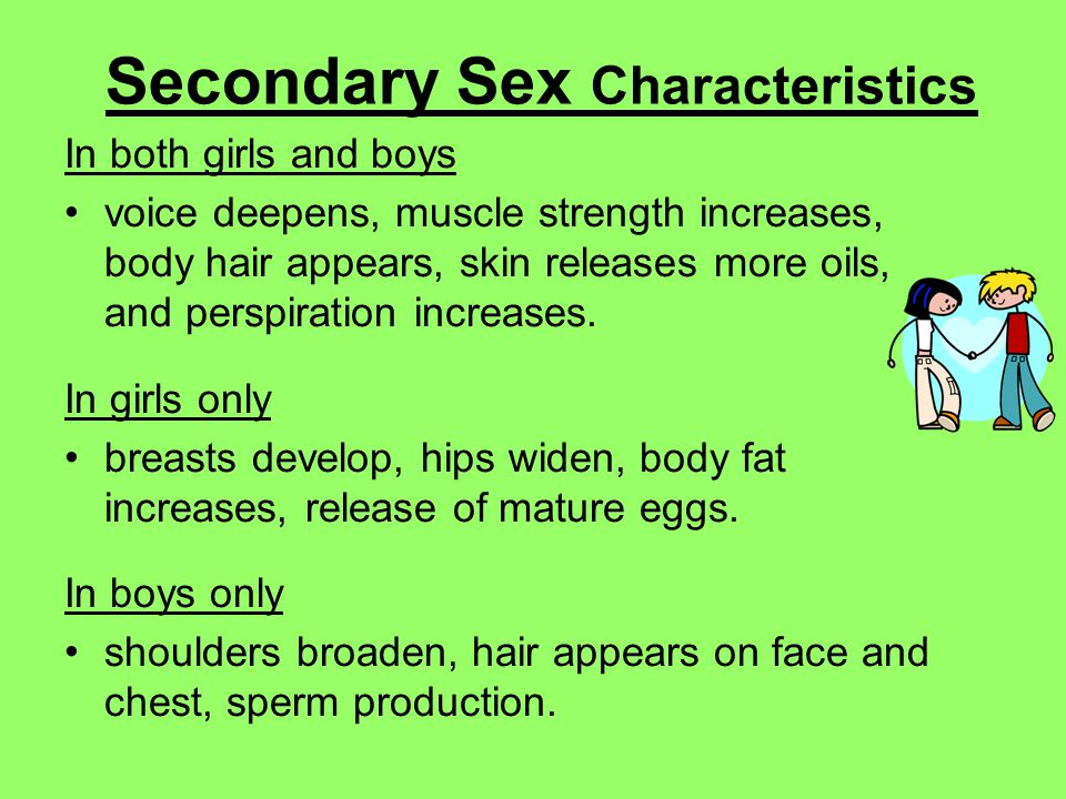 Examples of female secondary sexual characteristics