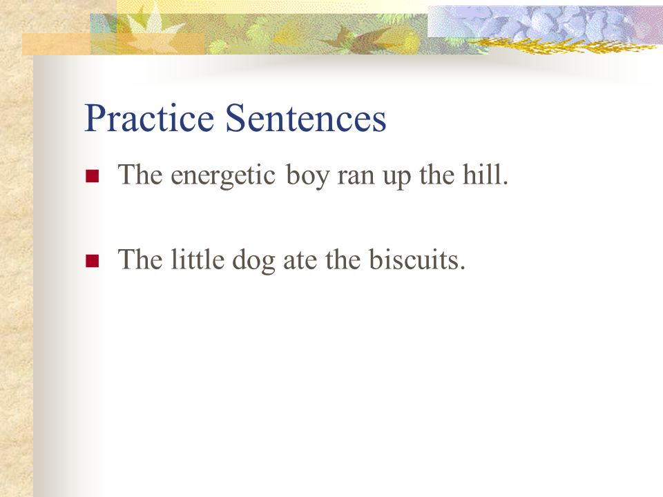 Practice Sentences The energetic boy ran up the hill.