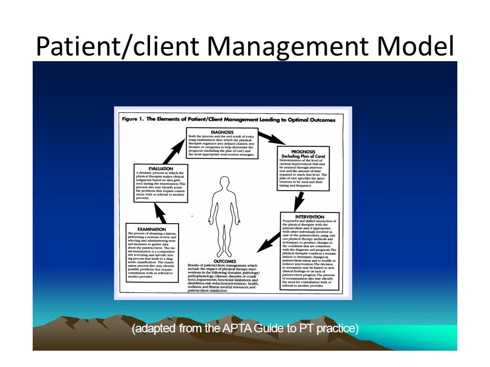 evidence based decision making in pediatric physical therapy ppt rh slideplayer com apta guide to physical therapy practice Pediatric Physical Therapy