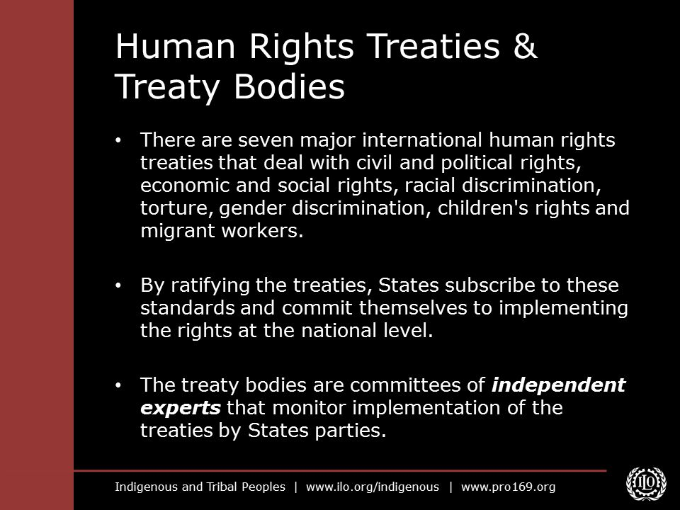 Human Rights Treaties & Treaty Bodies