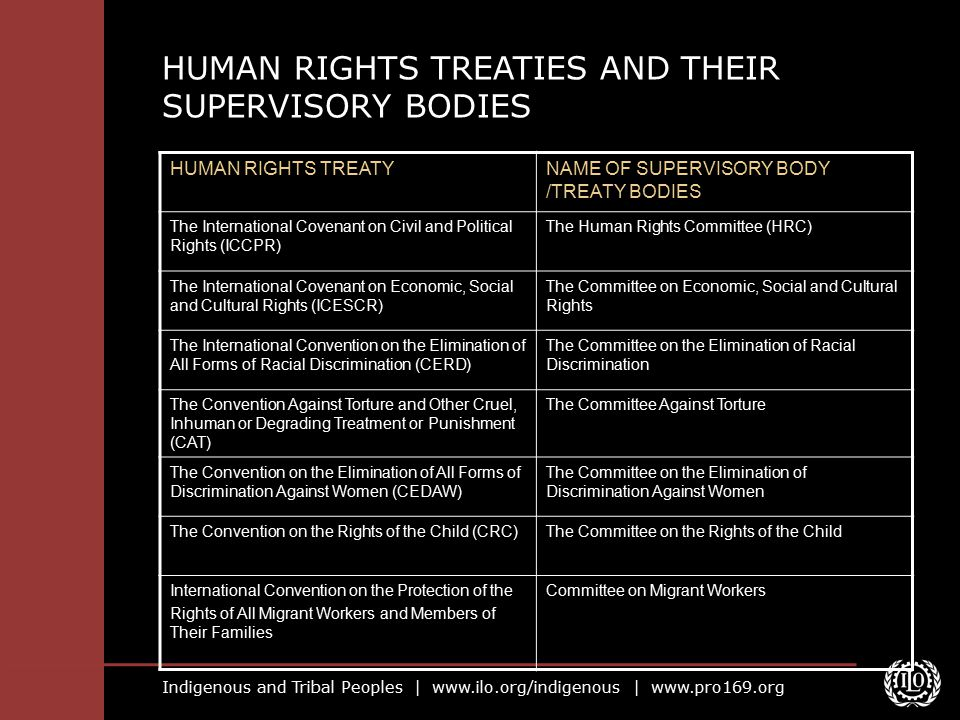 HUMAN RIGHTS TREATIES AND THEIR SUPERVISORY BODIES