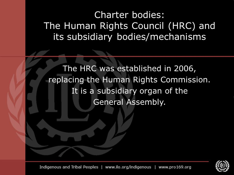 Charter bodies: The Human Rights Council (HRC) and its subsidiary bodies/mechanisms