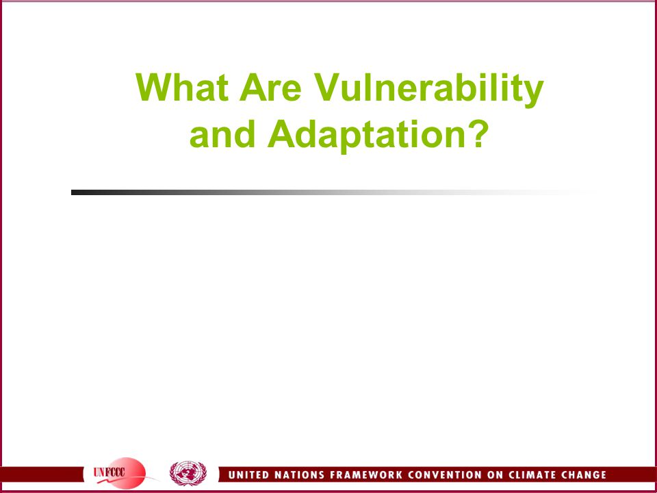 What Are Vulnerability and Adaptation