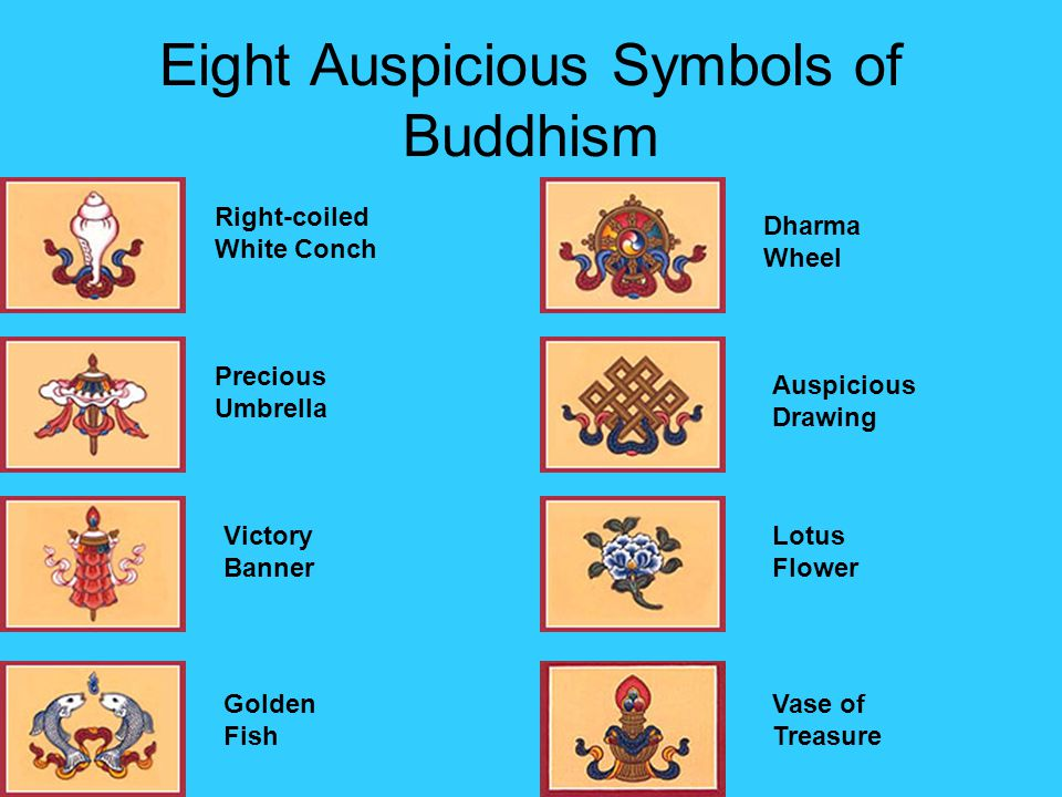 Ancient China And India Ppt Video Online Download