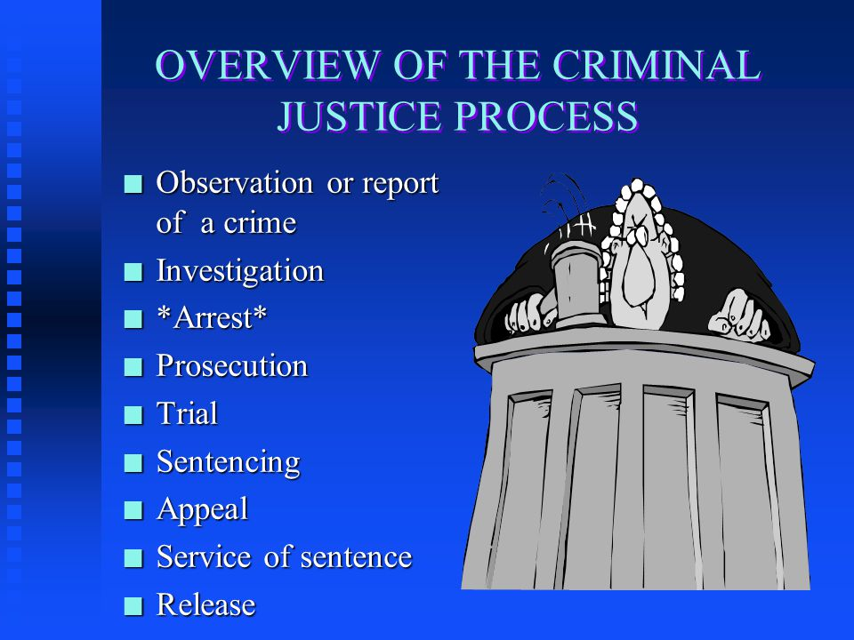 OVERVIEW OF THE CRIMINAL JUSTICE PROCESS