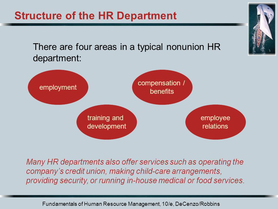 Structure of the HR Department
