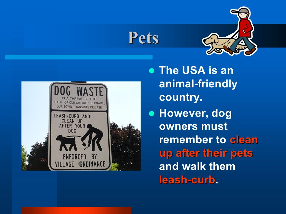 Pets The USA is an animal-friendly country.