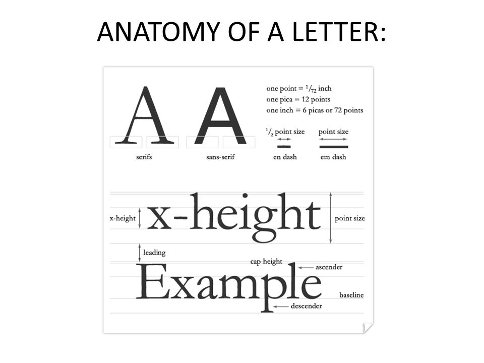 A short lesson about type and how to organize it on your page… - ppt ...