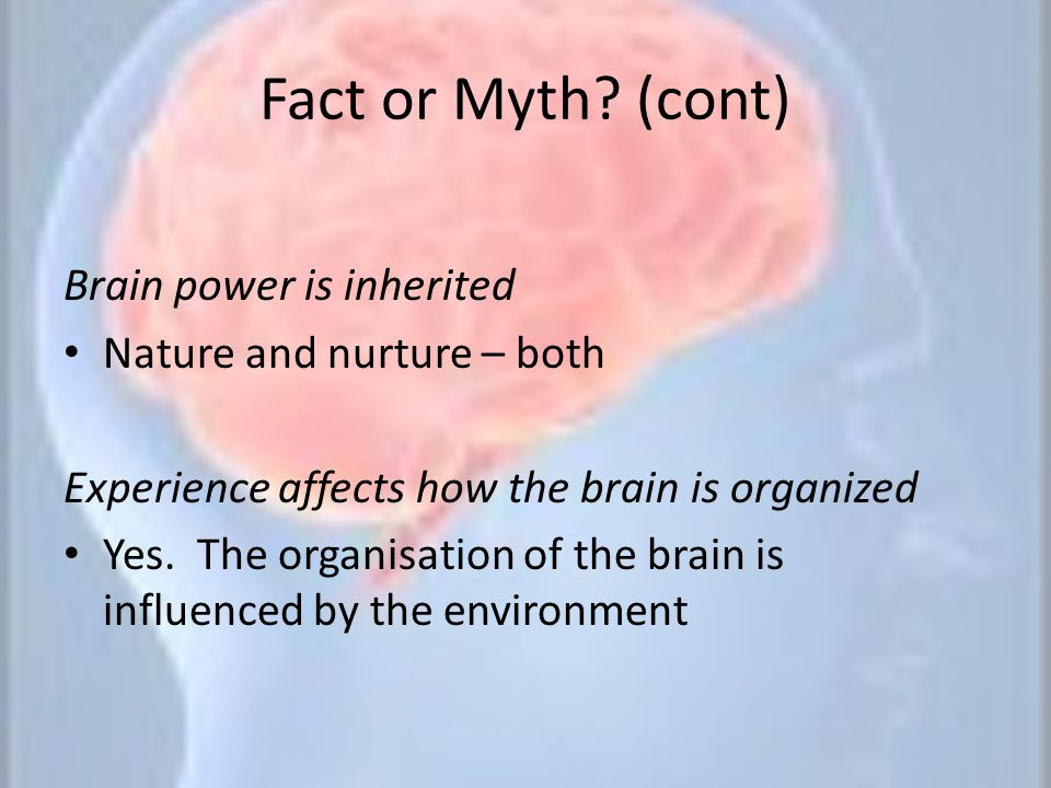 Fact or Myth (cont) Brain power is inherited