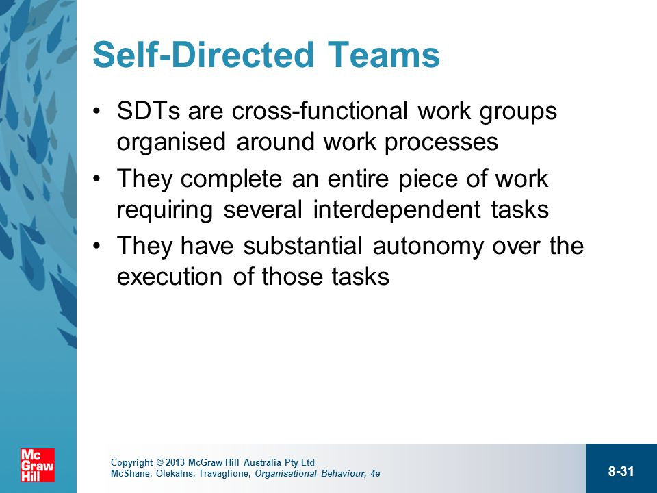 self directed teams advantages and disadvantages