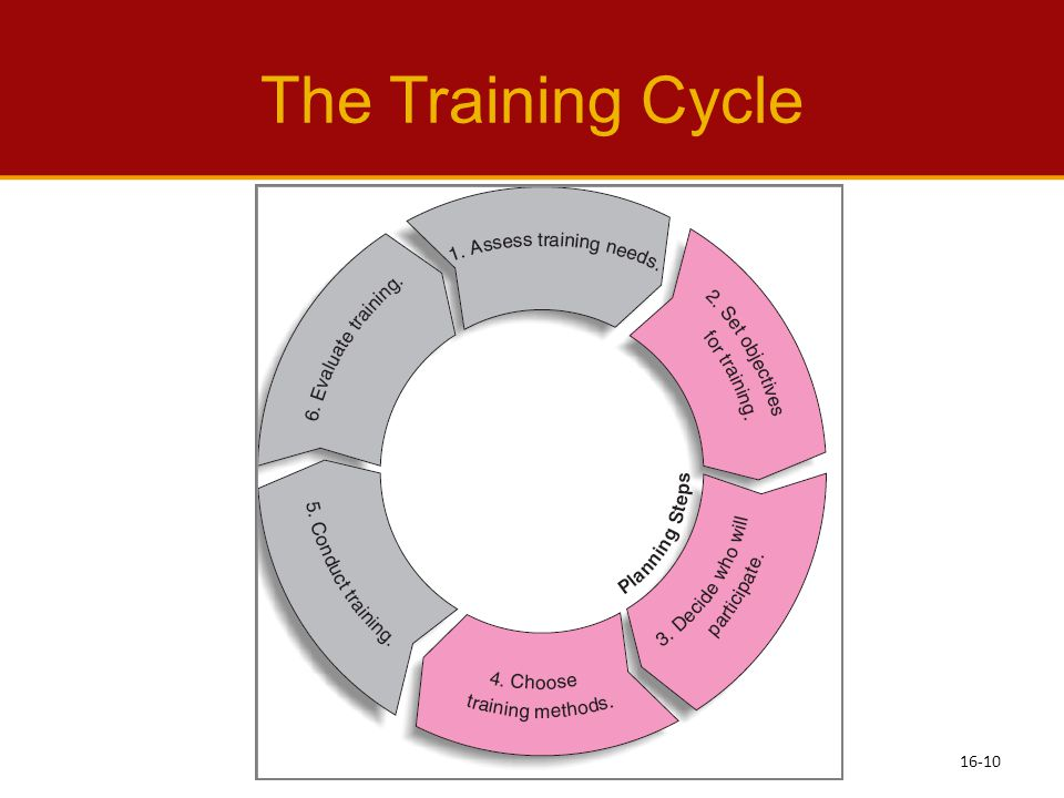 The Training Cycle See Learning Objective 4: Describe the training cycle. See text page: 452