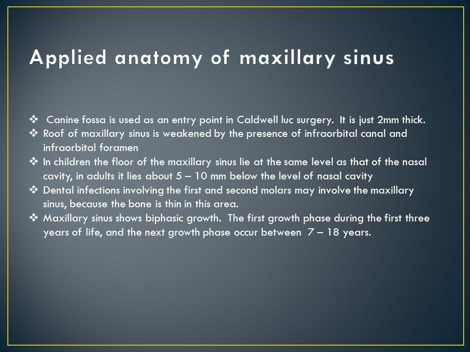 Anatomy of Para nasal sinuses - ppt download