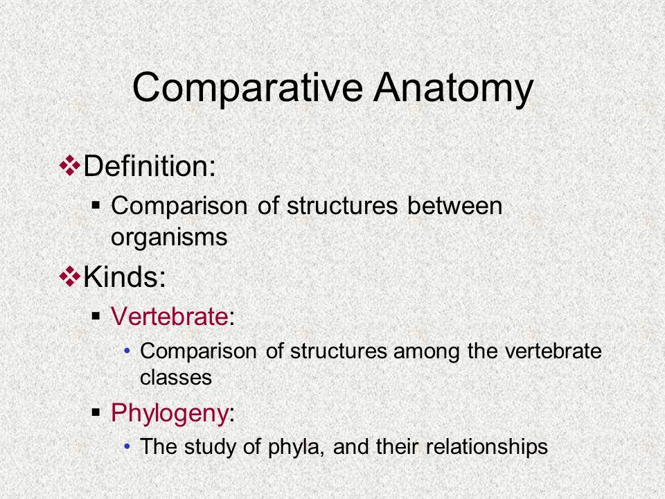 Biology 220 Professor Sharon Daniel Ppt Video Online Download