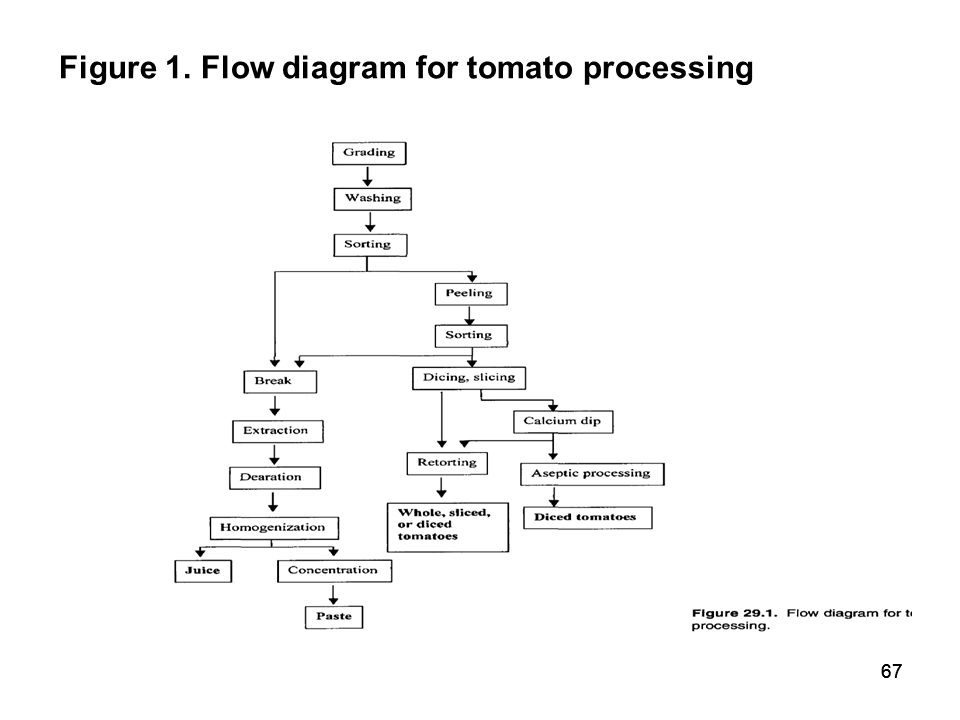 sample costs to produce processing tomatoes Typically, indirect cost items include things such production wages (unless they can be assigned to production scenarios business, try to use as accurate an estimate as.