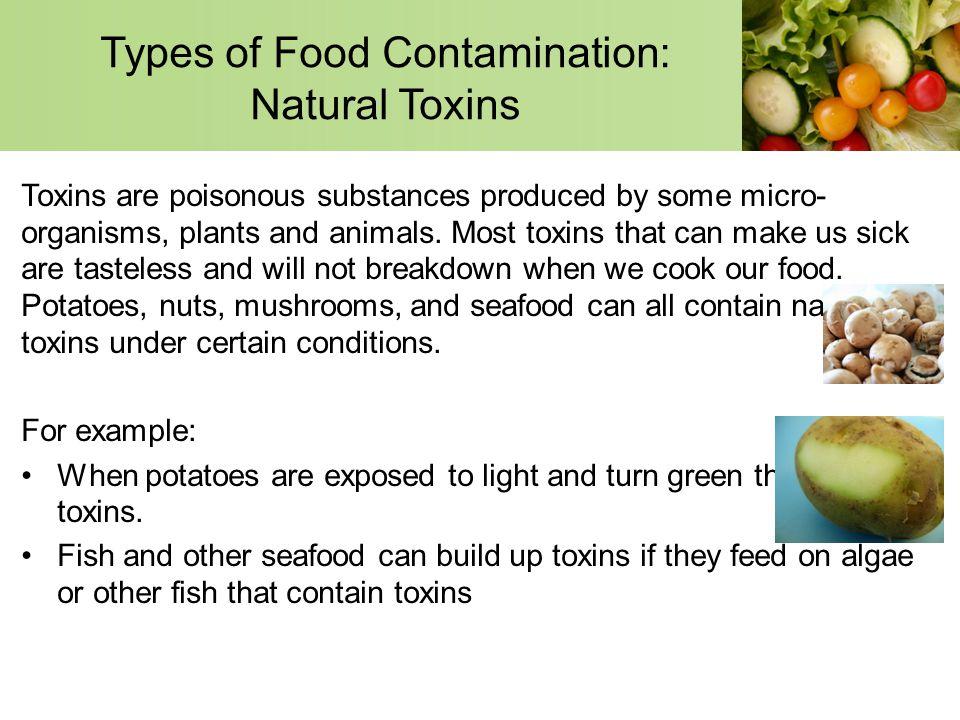 types of food toxins