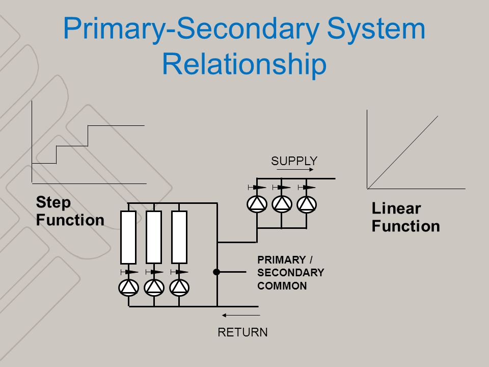 primary and secondary relationship