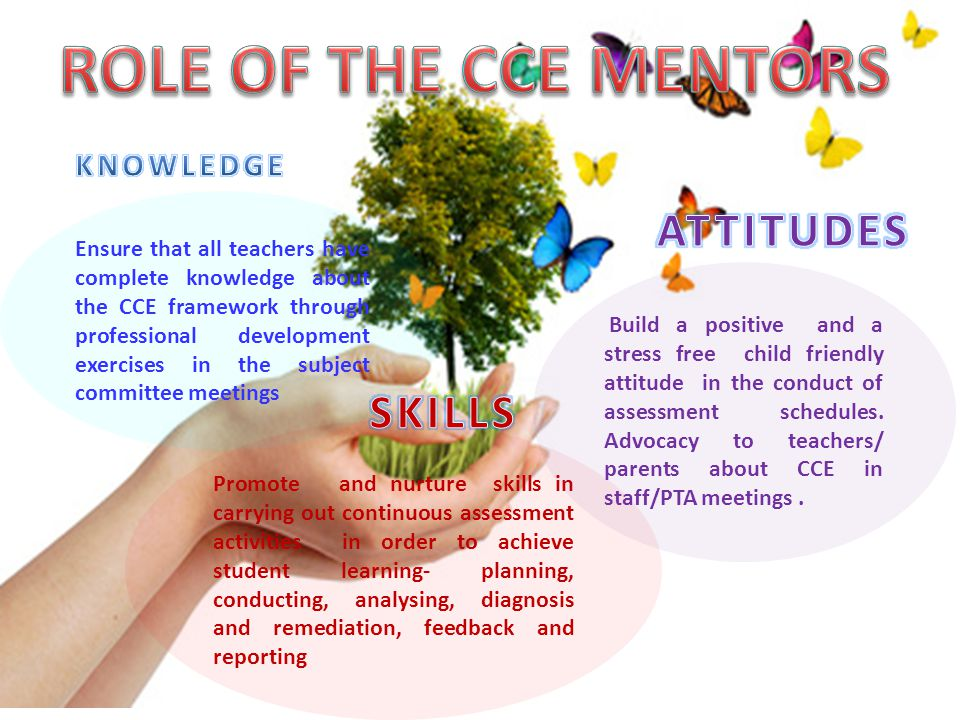 ROLE OF THE CCE MENTORS ATTITUDES SKILLS KNOWLEDGE