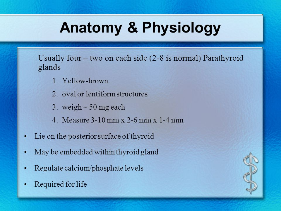 Histology Anatomy & Physiology Diseases - ppt video online download