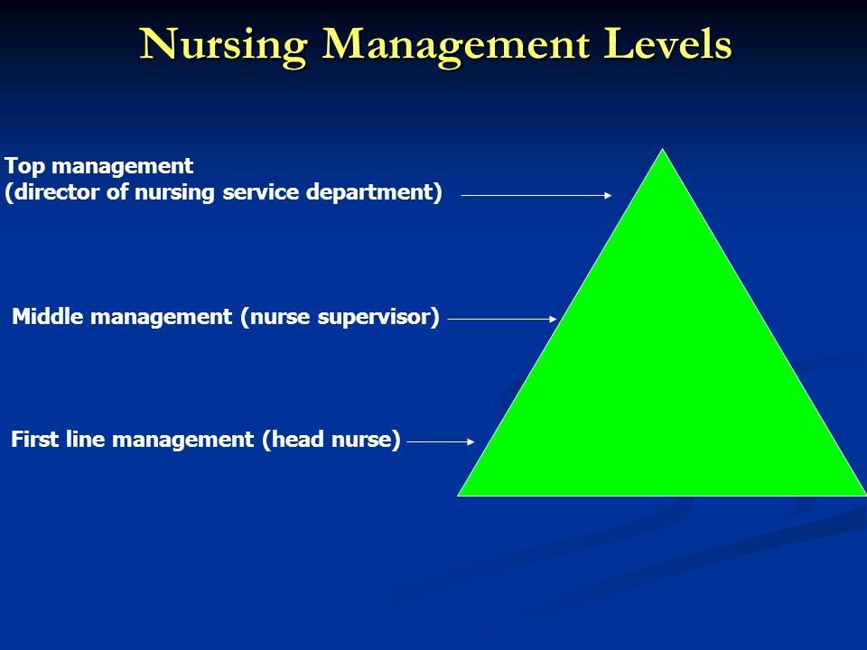Role of the Head Nurse. - ppt video online download