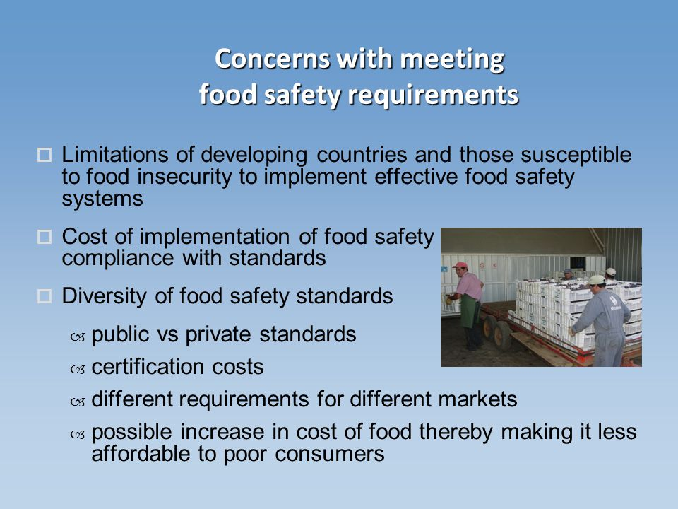 importance of food security in developing countries pdf