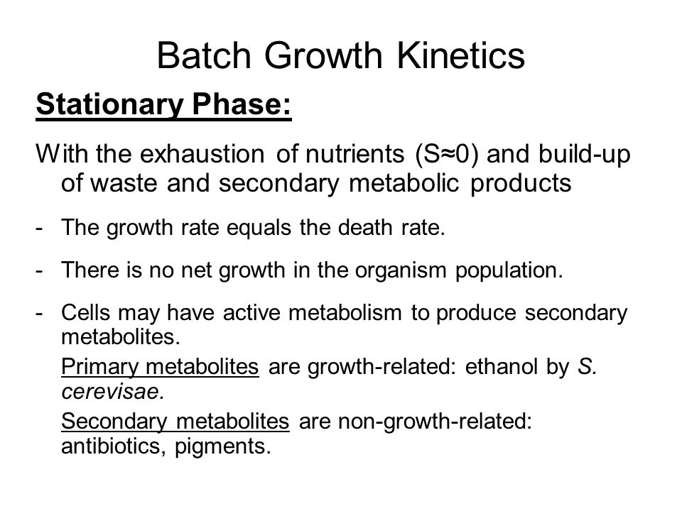 Batch Growth Kinetics Stationary Phase: